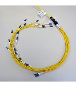 Cavi trunk 8 fibre monomodali 9/125